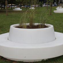 Dizainas: plastikinio suoliuko viduryje augs želdiniai.