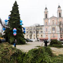 Kaunas rengiasi Kalėdoms: šiemet kurs saldžią pasaką