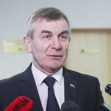 V. Pranckietis: Seimas nesiryžtų balsuoti už pirmalaikius rinkimus