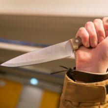 Panevėžyje girtas vyras švaistėsi peiliu: sužalota moteris atsidūrė ligoninėje