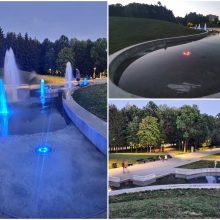 Dalis Draugystės parko fontano neveikia jau kelias savaites