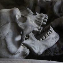 Panevėžyje rastos dvi žmogaus kaukolės