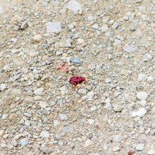 """Kraupi nelaimė """"Akropolyje"""": iš ketvirto aukšto aikštelės iškrito jaunas vyras"""