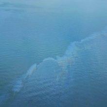 Baltijos jūros vandenyse užfiksuota didelė teršalų dėmė