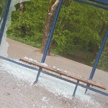Uostamiestyje siaučia vandalai: niokojamos sienos, dūžta stiklai