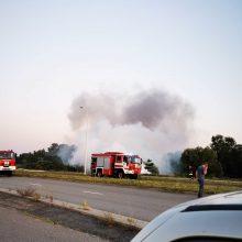 Klaipėdos priemiestyje automobilis virto ugnies stulpu