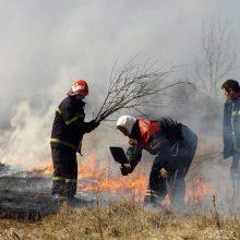 Ugniagesiai šeštadienį 35 kartus vyko gesinti degančios žolės