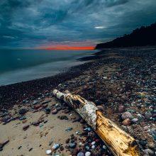 R. Bolgov: fotografai nemiega