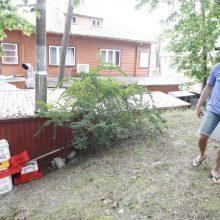 Teritorija: D.Miklovas sankcijų sulaukė dėl šašlykinės, kuri įrengta vidiniame kieme, sandėlių ir stoginės.