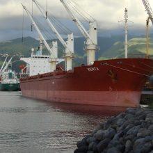 Išnykusi laivininkystė klampina valstybę