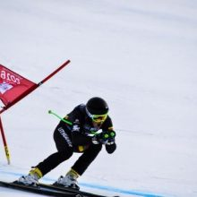Jaunimo žiemos olimpiadoje A. Drukarovas didžiojo slalomo rungtyje kol kas 32-as