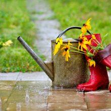 Orai: sinoptikai turi blogą žinią – gražios dienos baigiasi