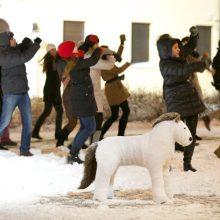 Vilniuje su šokiais savaitgalį atšvęsta Arklių diena