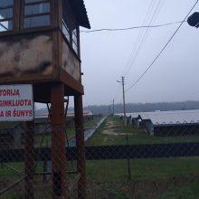 """""""Danmink"""" ūkyje užmigdoma 3 tūkst. audinių, kailius saugos šaldikliuose"""