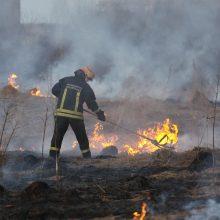 Per savaitgalį Lietuvoje kilo 129 žolės gaisrai