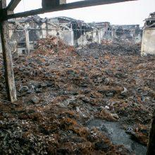 """Toliau tiriama gyventojų sveikata po gaisro Alytaus įmonėje """"Ekologistika"""""""