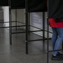 """""""Baltosios pirštinės"""": balsavimas vyko sklandžiau nei pirmajame Seimo rinkimų ture"""
