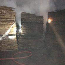 Didžiulis gaisras Panevėžyje: degė medienos gaminių bendrovė