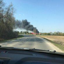 Kauno rajone – gaisras kaimo turizmo sodyboje