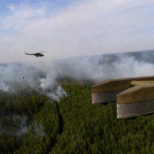 Kovai su miškų gaisrais Sibire bus pasitelkta dar daugiau lėktuvų
