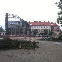 Panevėžyje užvirė skandalas dėl Laisvės aikštėje iškirstų medžių