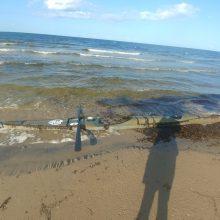 Baltijos jūroje dingusio latvio baidarė rasta Estijos pakrantėje
