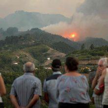 Dėl didžiulio gaisro Kanarų salose evakuota 5 tūkst. žmonių
