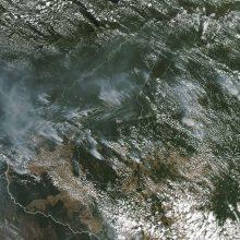 Brazilijos Amazonės miškuose šiemet – rekordinis gaisrų skaičius