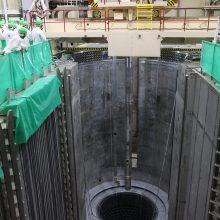 Įvertino Astravo AE fizikinį paleidimą: išmontavimas jau vyktų Ignalinos AE principu
