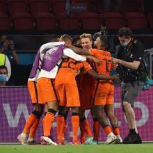 Europos futbolo čempionatas: Nyderlandai džiaugėsi pergale