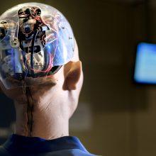 Dirbtinio intelekto ir žmogaus dvikova: pergalės scenarijus