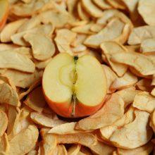 Kaip paruošti ir džiovinti uogas, vaisius ar grybus?