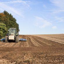Ūkininkams visas avansines išmokas planuojama išmokėti spalį