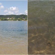 Prireikė metų, kad išgirstų: pavojingo vamzdžio Lampėdžio ežere neliks