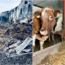 Žalą dėl gaisro patyrusiam Alytaus rajonui Vyriausybė skyrė 58 tūkst. eurų