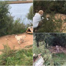 Kilus skandalui šunų savininkas suskubo rūpintis aplinka, bet ar minia visada teisi?