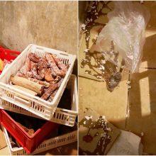 Alytuje išaiškinta neleistina mėsos perdirbimo veikla