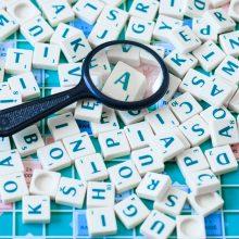 Ar bus leista įmonių pavadinimus rašyti nelietuviškai?