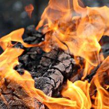 Molėtų rajone šalia laužo rastas apdegusios moters kūnas