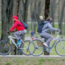 Servisuose – dviračių bumas: stebina klientų klaidos ir kuriozai