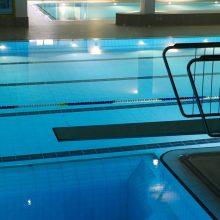 Panevėžio baseinui pristatyta 10 architektūrinių idėjų