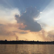 Brazilijos valdžia dėl miško gaisrų Amazonijoje sudarė krizės štabą