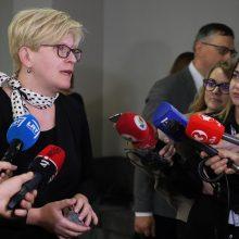 I. Šimonytė ragina susirūpinti slapto balsavimo Seime standartais