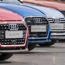 """""""Audi"""" nebegamins TT ir R8 automobilių"""