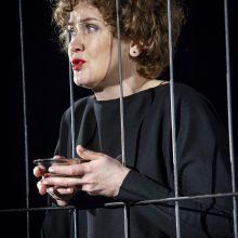 D. Rudokaitė – aktorė, kitiems padedanti išgydyti savas žaizdas