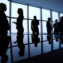 R. Skyrienė apie galimybes į Lietuvą norinčioms ateiti užsienio įmonėms: dar turime kur pasitempti