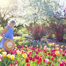Pavasaris grįš į savo vėžes – teks šilčiau apsirengti