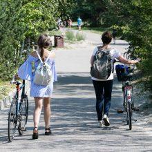 Nidoje už beveik 0,5 mln. eurų tvarkomas dviračių takas