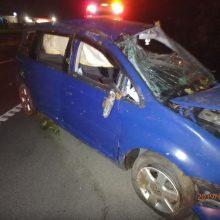 """Girtas vairuotojas nusprendė savo automobiliu """"apgenėti"""" medžius"""