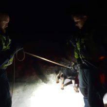 Policijos pareigūnai automobiliu partrenktą šunį pristatė gyvūnų globos draugijai